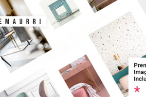 Emaurri - Architecture and Interior Design Theme